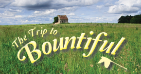 Auditions for Horton Foote's Trip To Bountiful.