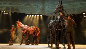 War Horse A Magical Night Of Theatre