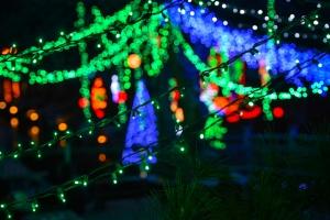 Mozarts-Christmas-show-3