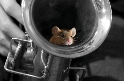of-mice-and-music_event-640x420